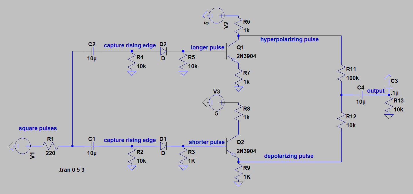Action Potential Generator Circuit Random Number Diagram Separate Depolarization Bottom And Afterhyperpolarization Ahp Top Signals Prior To Combining